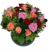 Hello Roses